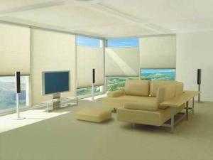 white shutters installed in living room